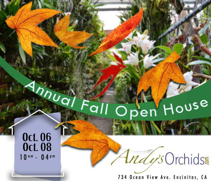 <b>Andys Orchids<br>Open House<BR>Oct 6-8<br></b>