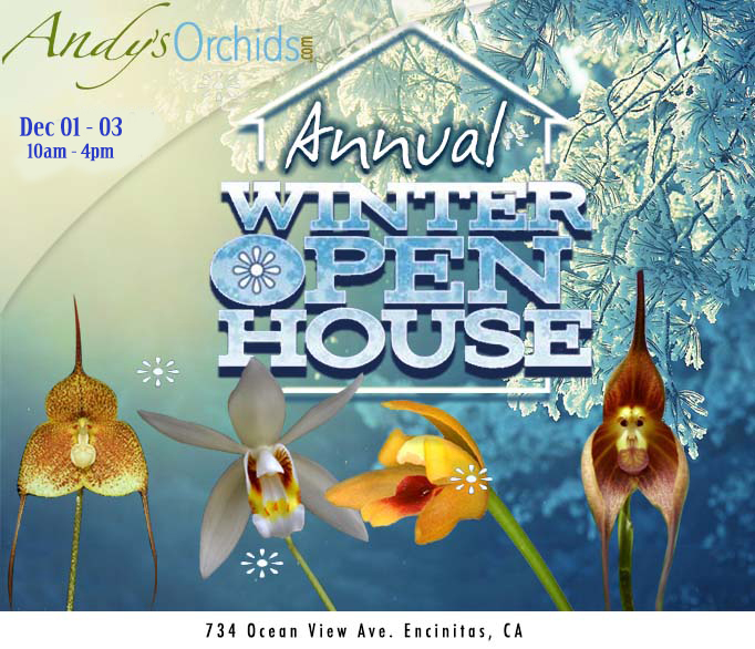 "<b>Andys Orchids<br/>""Winter 2017 Open house""<br/>Dec 1-3</b><br/>"