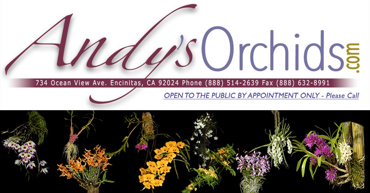 andysorchids.com