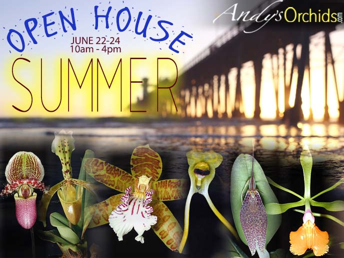 <b>Andys Orchids<br/>`Summer 2018 Open house`<br/>June 22nd-24th</b><br/>