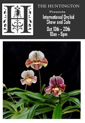 <b>International Orchid Show & Sale</b><br/> At the Huntington (Pasadena - CA)<br/> Oct 18-20, 2019 / 10an - 5pm<br/>