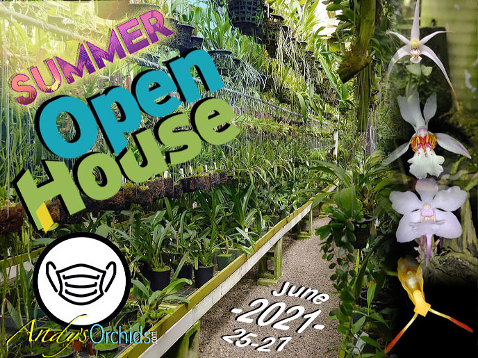 Andys Orchids Spring Open House