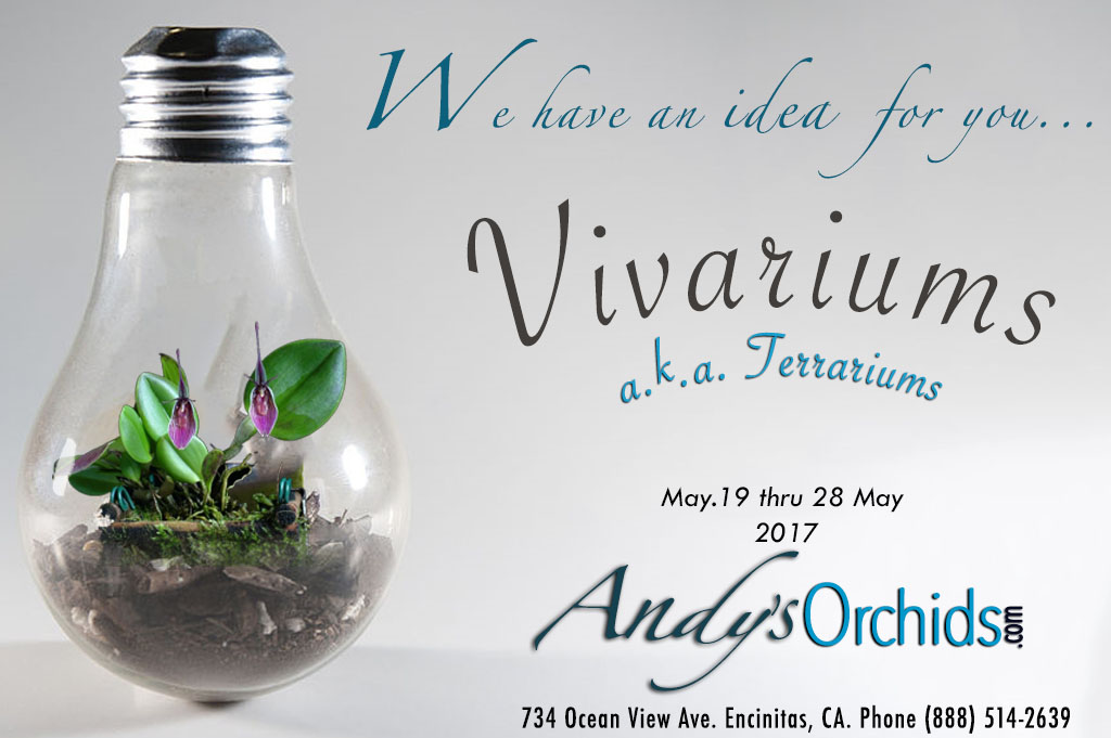 We have and Idea for you... Vivariums / Terrariums !